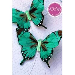 Mariposa de Pluma Verde mod. Kenia