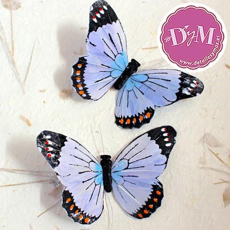 Mariposa de Pluma Iris Celeste