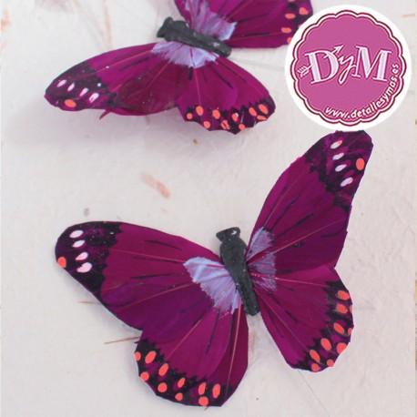 Mariposa de Pluma Iris Morada