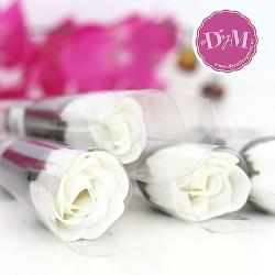 Rosa de Jabón blanco